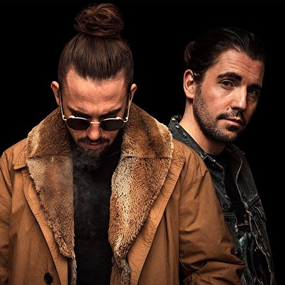 Dimitri Vegas & Like Mike (foto)