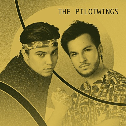 The Pilotwings (foto)