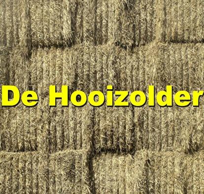 Hooizolder (afbeelding)