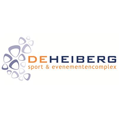 De Heiberg (afbeelding)