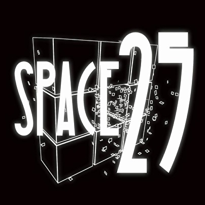 Space 25 (afbeelding)