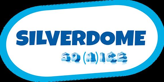 SilverDome (afbeelding)