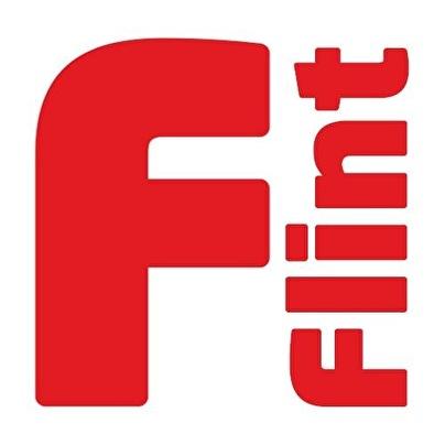 afbeelding Flint
