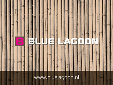 afbeelding Blue Lagoon