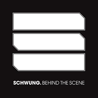 afbeelding Schwung.
