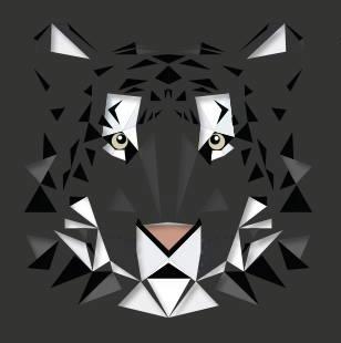 Wildcats (afbeelding)