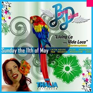 barrio deluxe living la vida loca 11 may 2008 villa thalia