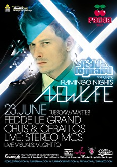 Flamingo Nights (flyer)