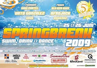 Spring Break Party (flyer)