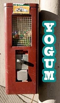 Yogum (flyer)
