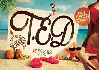 T.E.D (flyer)