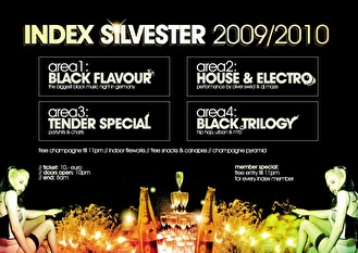 Silvester Party (flyer)
