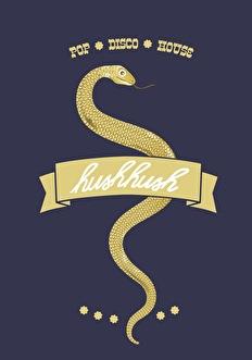 Hush Hush (flyer)