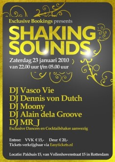 Shaking Sounds (flyer)