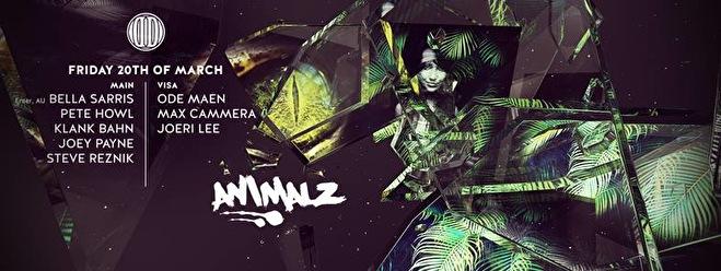 Animalz (flyer)