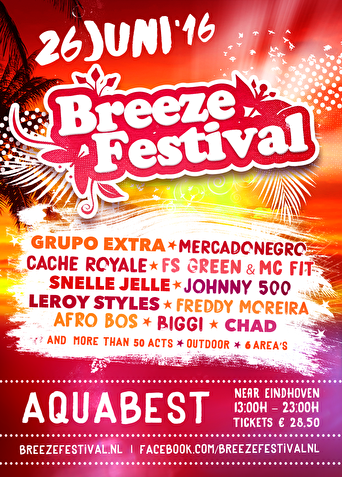 Breeze festival (flyer)