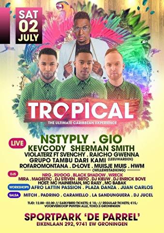 Tropical Summer Festival (flyer)