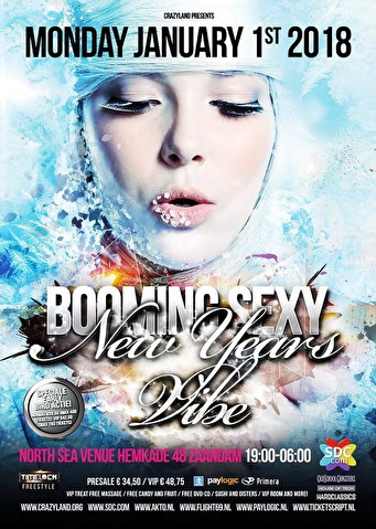 Booming Sexy New Years Vibe (flyer)