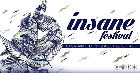 flyer Insane Festival