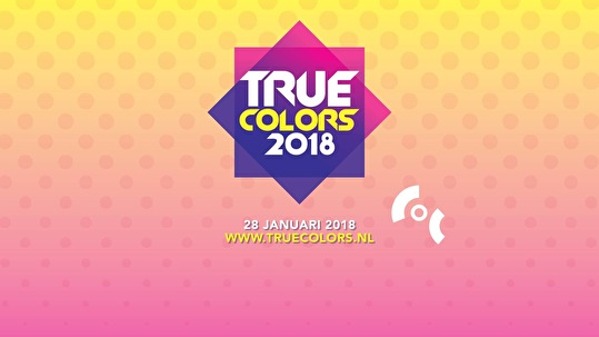 flyer True Colors