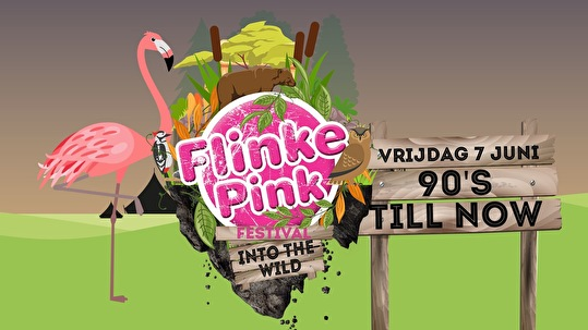 flyer Flinke Pink