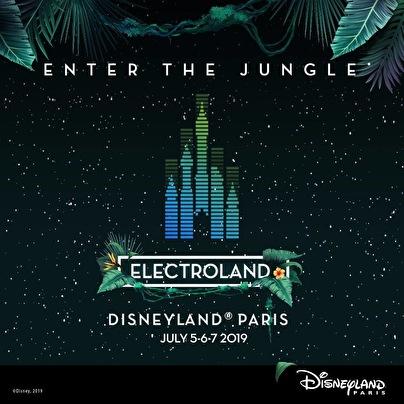flyer Electroland