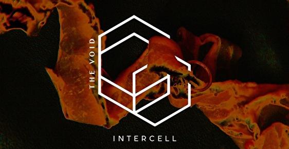 Intercell (flyer)