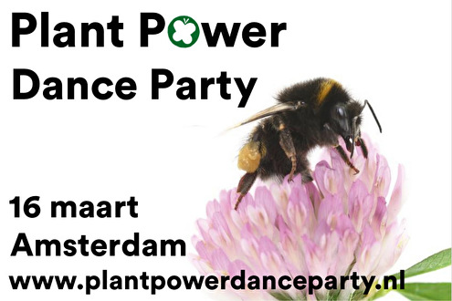 flyer Plant Power Dance Party