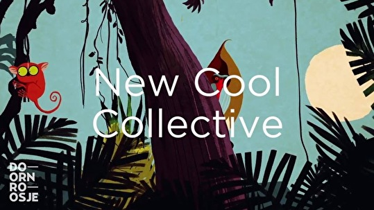 flyer New Cool Collective