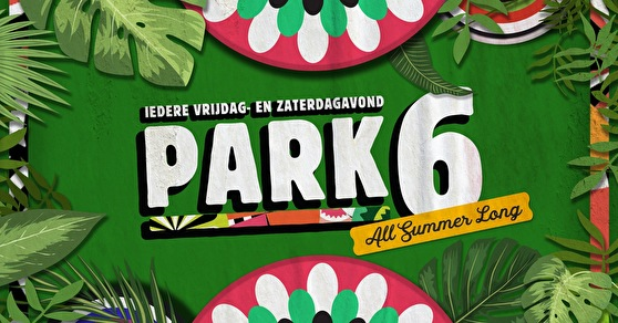 flyer Park 6 By Night