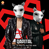 Qapital – Mixed by Phuture Noize (afbeelding)
